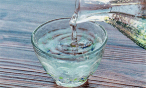 ノンアル 日本酒「大吟醸」・梅酒